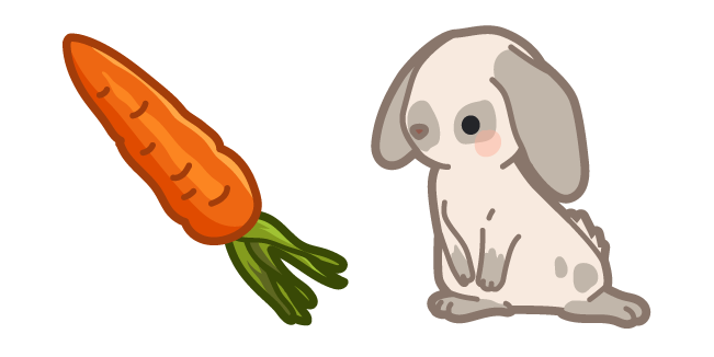 Cute Rabbit and Carrot