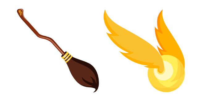 Harry Potter Nimbus 2000 and Golden Snitch