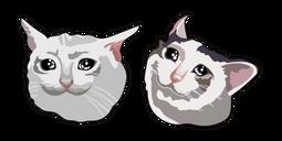 Crying Cat Meme Transparent - Best Cat Wallpaper