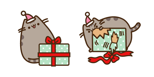 Pusheen with Christmas Present