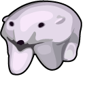 Polar Bear GIF Meme Pointer
