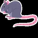 Rat Pointer