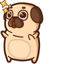 Puglie Pug Pointer