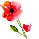 Hand Painted Poppy Flower Pointer