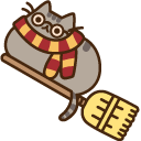 Pusheen Potter and Broomstick Pointer