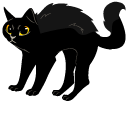 Black Cat Pointer