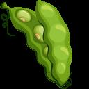 Green Bean Pointer