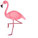 Flamingo Pointer