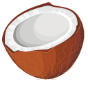 Brown Coconut Pointer