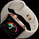 Apple Watch Series 5 Pointer