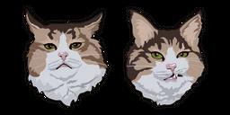 Rexie Cat