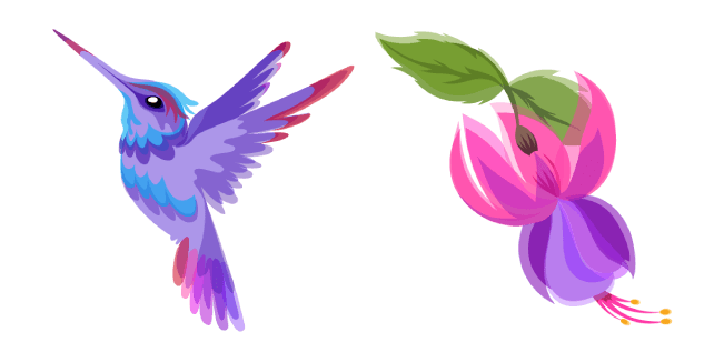 Hummingbird and Fuchsia Flower