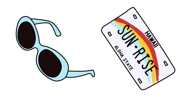 VSCO Girl Sunglasses and Car License Plate