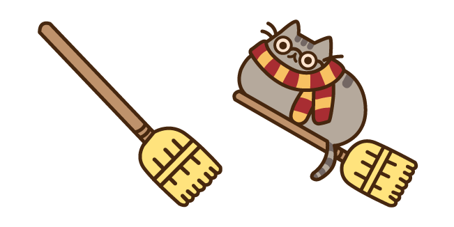 Pusheen Potter and Broomstick