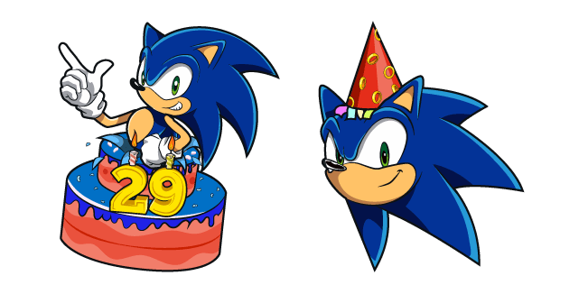 Sonic the Hedgehog 29th Birthday