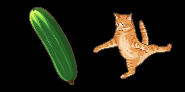 Scared Cat and Cucumber