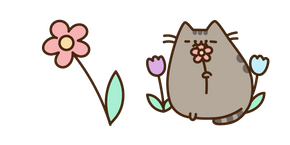 Pusheen and Flower