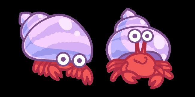 Cute Hermit Crab