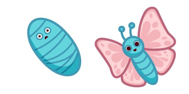 Cute Butterfly and Pupa
