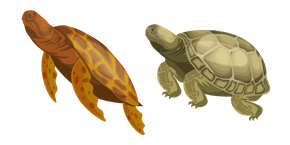 Turtle Cursor
