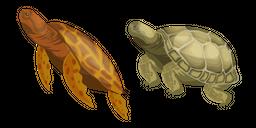 Turtle Curseur
