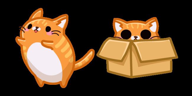 Cute Orange Cat in Box