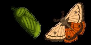 Moth Cursor
