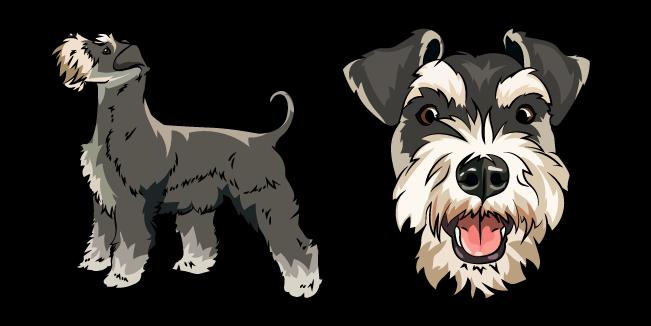 Schnauzer Dog