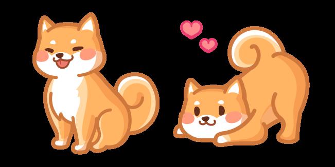 Cute Shiba Inu