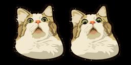 Scared Cat Meme Curseur